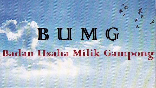 BUMG (Infodesa)